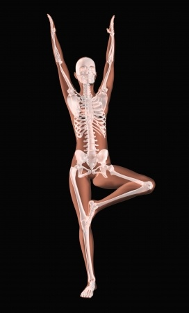 posture et tonus du corps